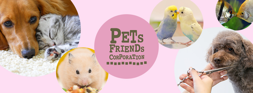 PETS FRIENDS CORPORATION